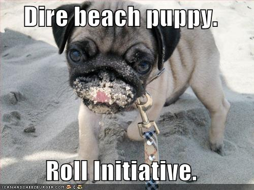 roll-initiative-puppy