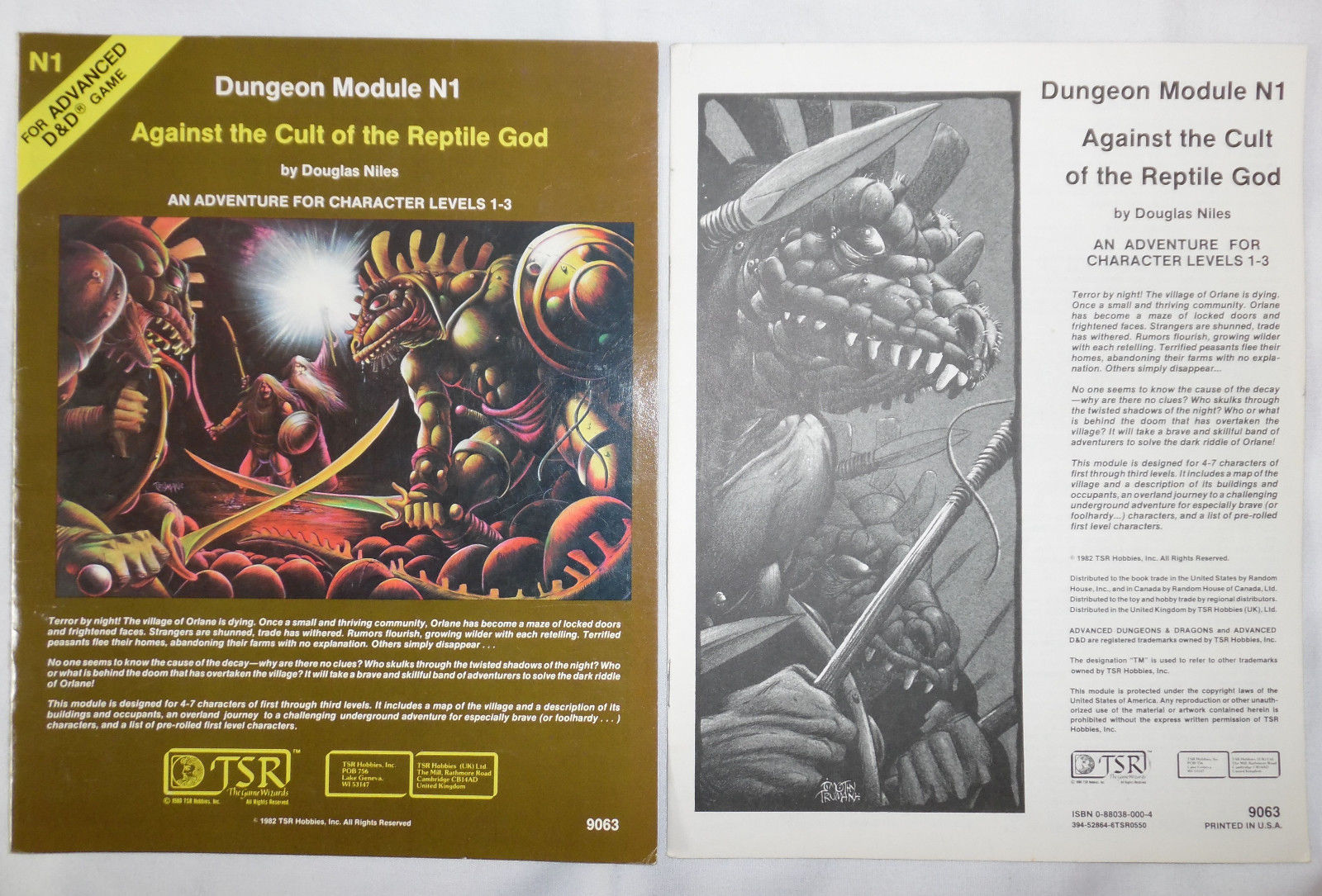 dungeons-dragons-against-the-cult-of-the-reptile-god-n1-9063-module-b2d06700ee0dc03957b9e6334b0df73a
